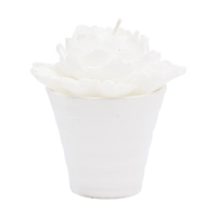 Candle Rose, White